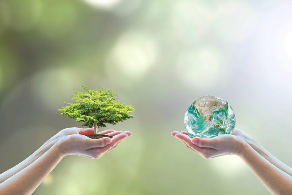 山形県再生可能エネルギー等設備導入事業費補助金