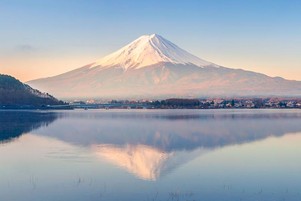 シーラックグループ世界遺産富士山を未来へプロジェクト基金